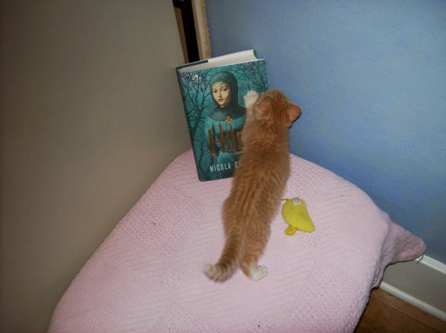jo booms wensleydale learns to read