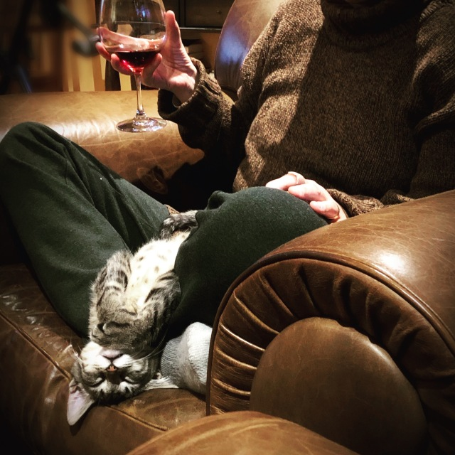 Sleeping kitten hangs upside down from lap of woman with a glass of wine, sitting cross-legged