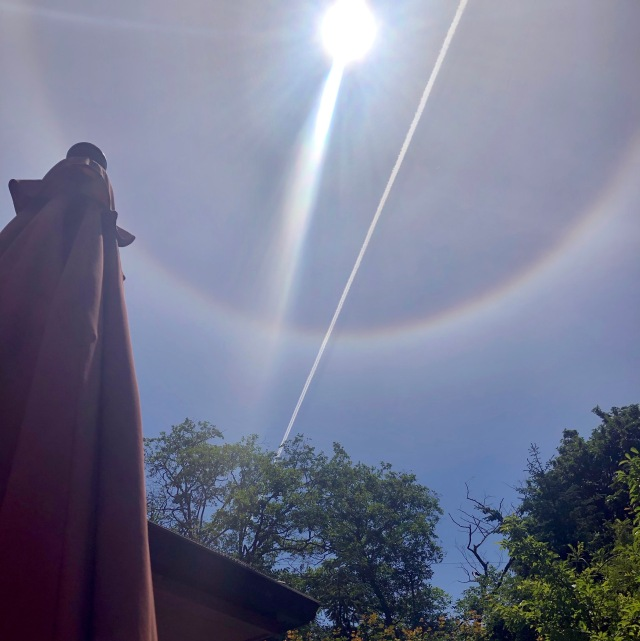 Photo of blue sky with blazing sun surrounded by a corona, and cut by a brilliant white jet contrail